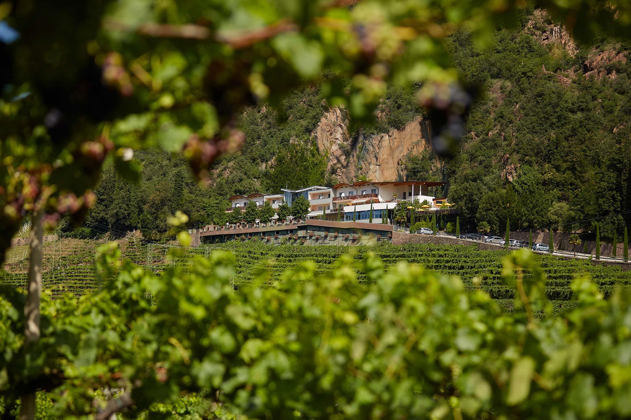 Gewinnspiel vinum hotels s dtirol ankommen genie en for Bozen designhotel