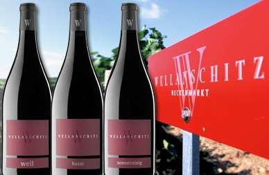 Magnum-Trio wein.gut Wellanschitz