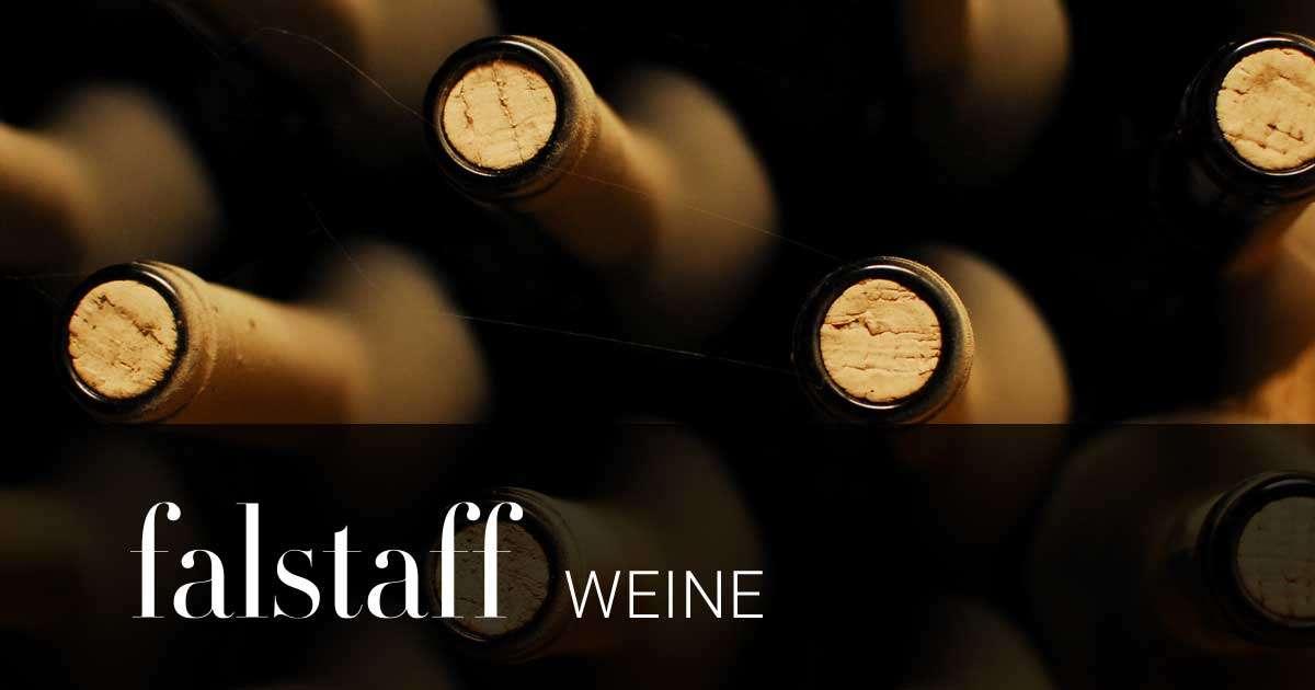 Weingut Hundsdorfer 2017 Mittelburgenland DAC Ried Hochberg - Falstaff - Falstaff